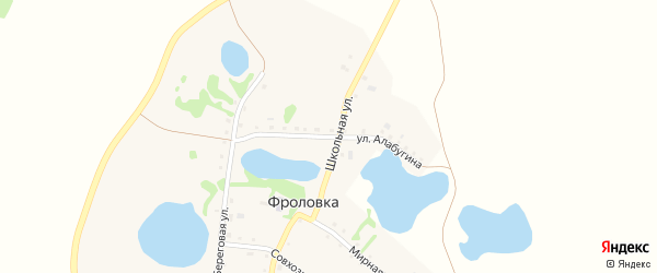 Улица Алабугина на карте деревни Фроловки с номерами домов
