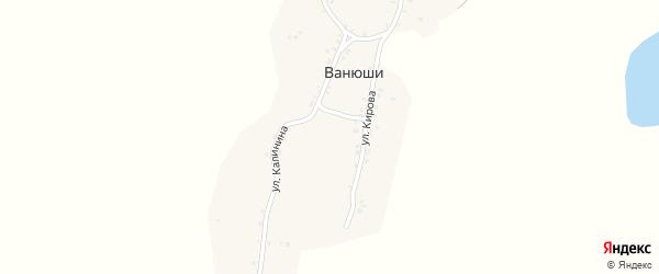 Улица Калинина на карте деревни Ванюши с номерами домов
