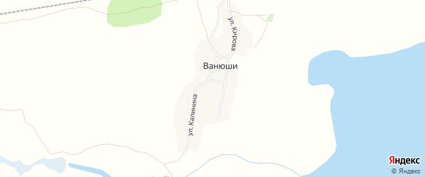 Карта деревни Ванюши в Челябинской области с улицами и номерами домов
