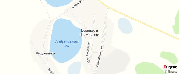 Карта деревни Большое Шумаково в Челябинской области с улицами и номерами домов