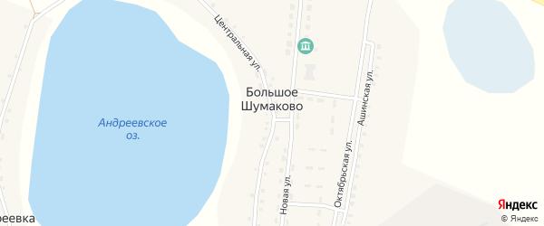 Центральная улица на карте деревни Большое Шумаково с номерами домов