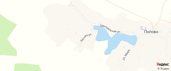 Лесная улица на карте села Попово с номерами домов