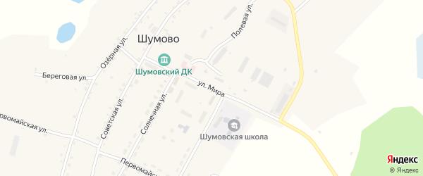 Улица Мира на карте садового товарищества Дубравы с номерами домов