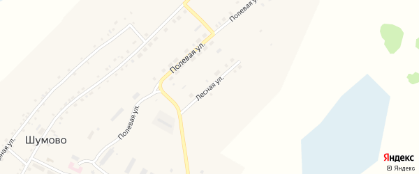 Лесная улица на карте села Шумово с номерами домов