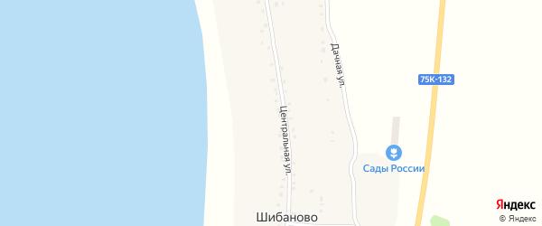 Дачная улица на карте деревни Шибаново с номерами домов