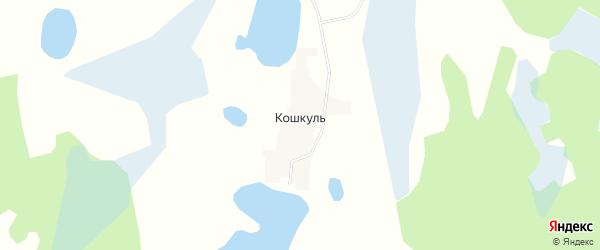 Карта деревни Кошкуля в Челябинской области с улицами и номерами домов