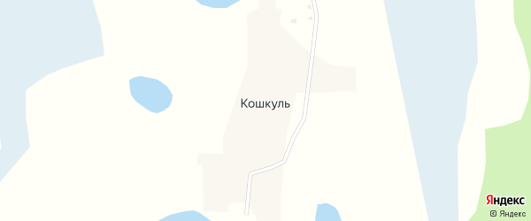 1-я улица на карте деревни Кошкуля с номерами домов