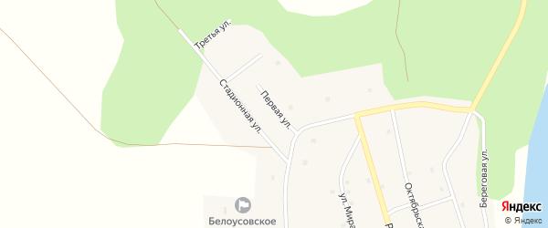 Первая улица на карте села Белоусово с номерами домов