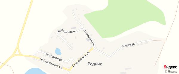 Школьная улица на карте поселка Родника с номерами домов