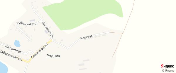 Новая улица на карте поселка Родника с номерами домов