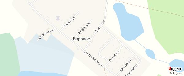 Третья улица на карте деревни Борового с номерами домов