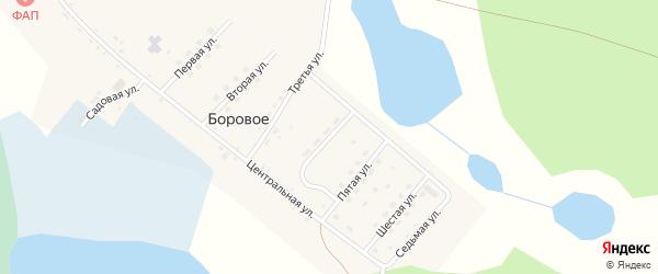 Четвертая улица на карте деревни Борового с номерами домов