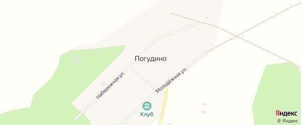 Молодежная улица на карте деревни Погудино с номерами домов