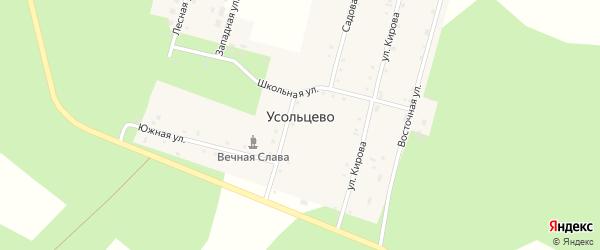 Западная улица на карте деревни Усольцево с номерами домов