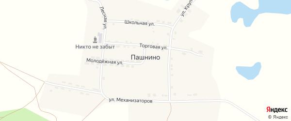 Школьная улица на карте села Пашнино с номерами домов