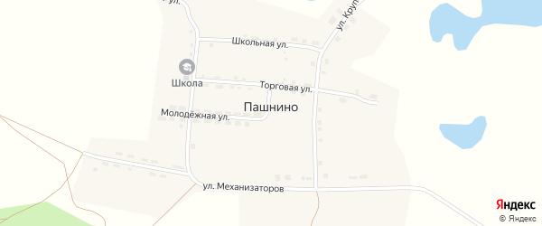Улица им Крупской на карте села Пашнино с номерами домов