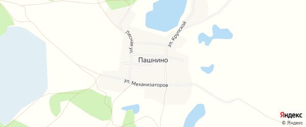 Карта села Пашнино в Челябинской области с улицами и номерами домов