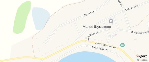 Береговая улица на карте села Малое Шумаково с номерами домов