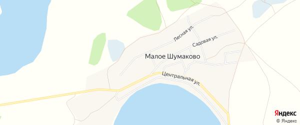Карта села Малое Шумаково в Челябинской области с улицами и номерами домов