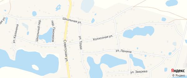 Колхозная улица на карте села Канашево с номерами домов