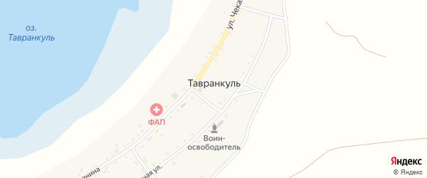 Улица Чеканина на карте села Тавранкуля с номерами домов