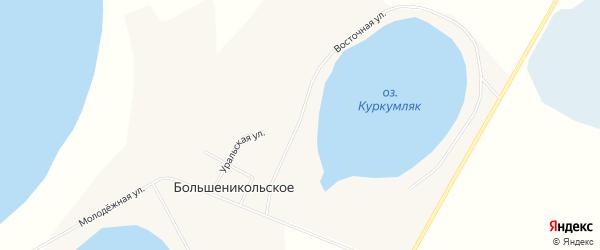 Карта Большеникольского села в Челябинской области с улицами и номерами домов