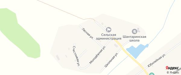 Лесная улица на карте поселка Шантарино с номерами домов