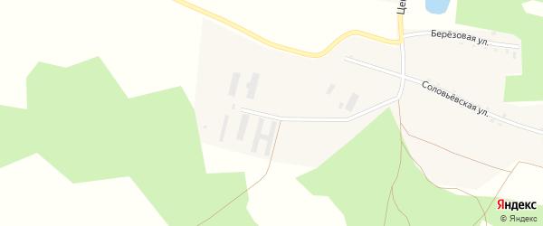 Центральная улица на карте села Калуги-Соловьевки с номерами домов