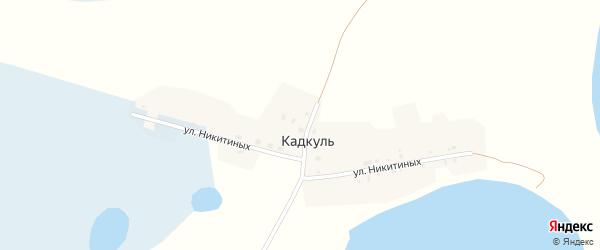Улица Никитиных на карте деревни Кадкуля с номерами домов