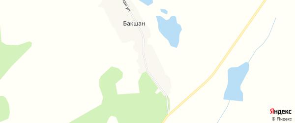 Карта деревни Бакшана в Челябинской области с улицами и номерами домов