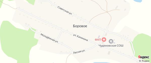 Улица Калинина на карте Борового села с номерами домов
