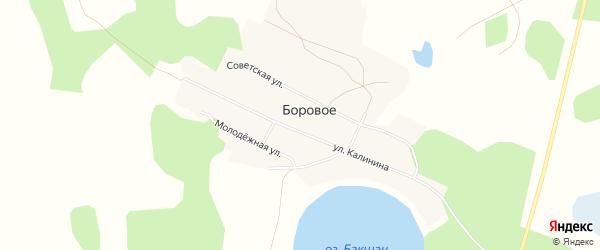 Карта Борового села в Челябинской области с улицами и номерами домов