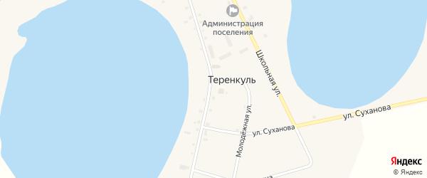 Набережный переулок на карте деревни Теренкуля с номерами домов
