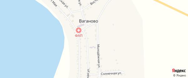1 Мая улица на карте села Ваганово с номерами домов