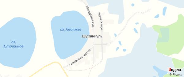 Карта деревни Шуранкуля в Челябинской области с улицами и номерами домов