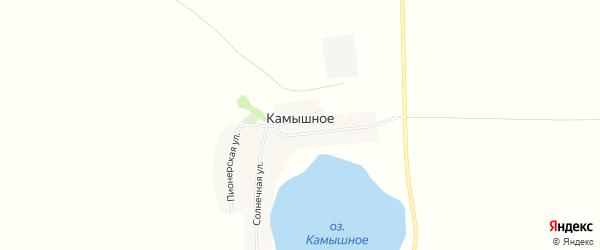 Карта деревни Камышного в Челябинской области с улицами и номерами домов