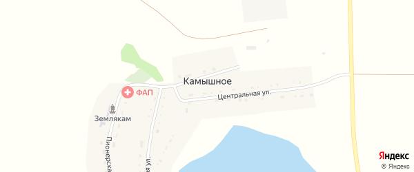 Центральная улица на карте деревни Камышного с номерами домов