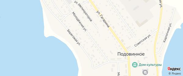 Молодежная улица на карте Подовинного села с номерами домов