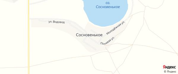 Карта деревни Сосновенького в Челябинской области с улицами и номерами домов