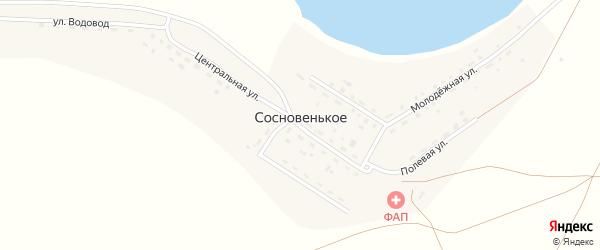 Улица Труда на карте деревни Сосновенького с номерами домов