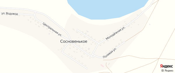 Приозерная улица на карте деревни Сосновенького с номерами домов