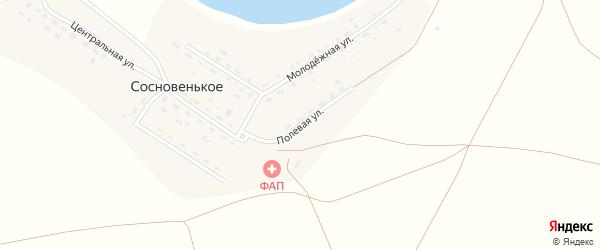 Полевая улица на карте деревни Сосновенького с номерами домов