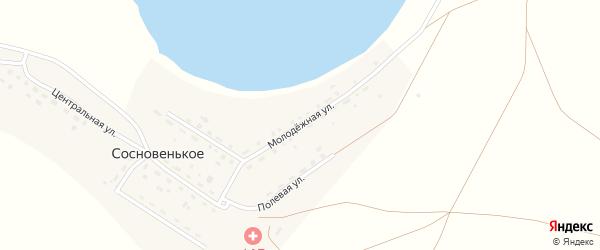 Молодежная улица на карте деревни Сосновенького с номерами домов