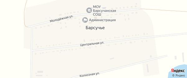 Центральная улица на карте деревни Барсучьего с номерами домов