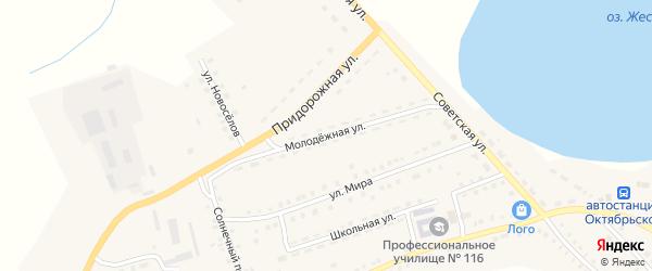 Молодежная улица на карте Октябрьского села с номерами домов