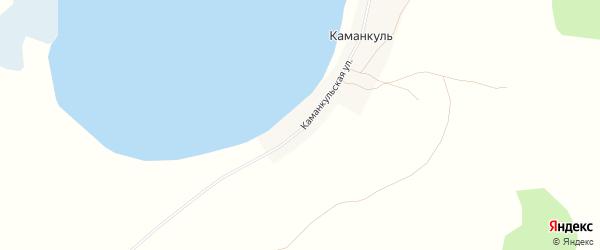 Карта деревни Каманкуля в Челябинской области с улицами и номерами домов