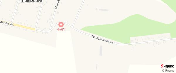 Центральная улица на карте деревни Шишминки с номерами домов