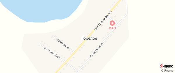 Центральная улица на карте деревни Горелого с номерами домов
