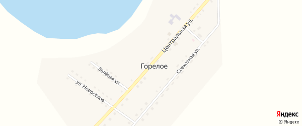 Центральная улица на карте деревни Александровка Каракульского СП с номерами домов