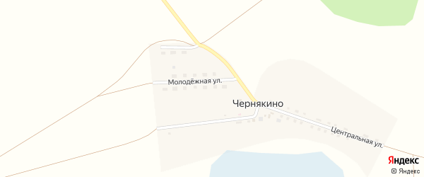 Молодежная улица на карте деревни Чернякино с номерами домов